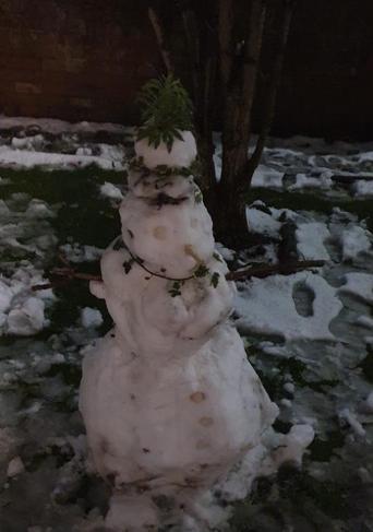 Bella's splendid snowman