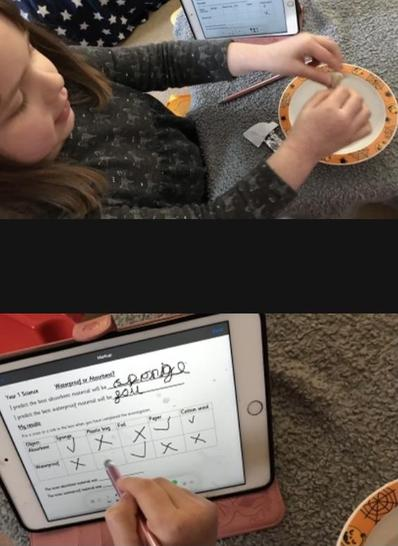 Marissa used a tablet to record her results in science
