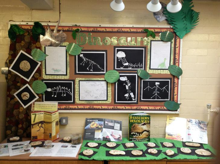 Our wonderful dinosaur display