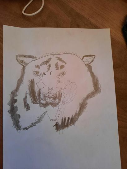 Look at Finlay's amazing tiger art work - the eyes look incredible!