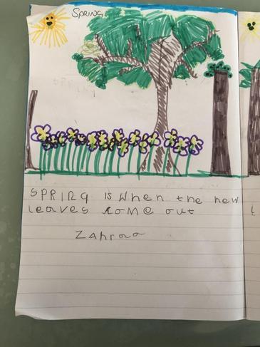 Zahraa's seasons