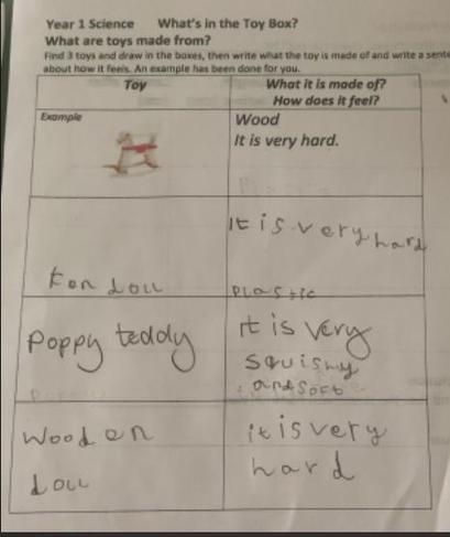 Zahraa's science work