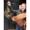 Betsy's pony feeder