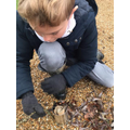 Harry making his bug hotel