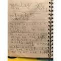Skye's daily super sentence challenge
