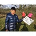Identifying rocks around the school grounds.