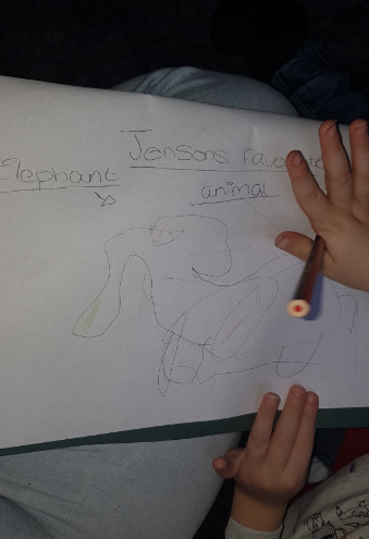 Drawing their favourite animals