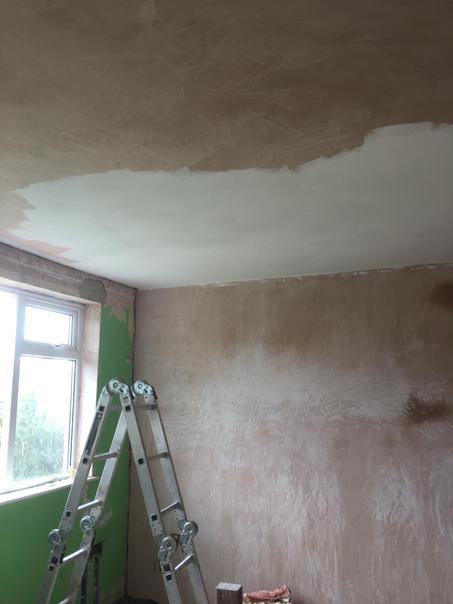 Painting the new ceiling in the office