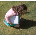 Chloe's bug hunt.