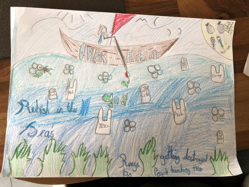 Katelyn's poster about protecting the oceans
