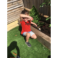Harry busy int the garden.