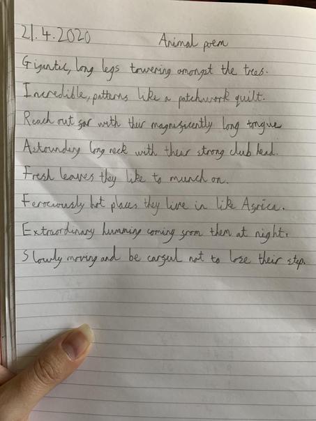 Ben's Giraffe Poem