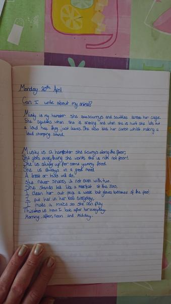 Reegan's Hamster Poem