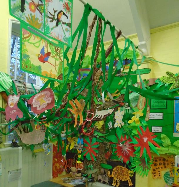 Our Beautiful Rainforest