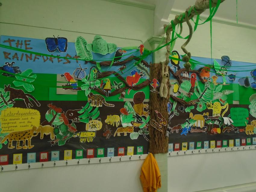 Our very own rainforest in the classroom