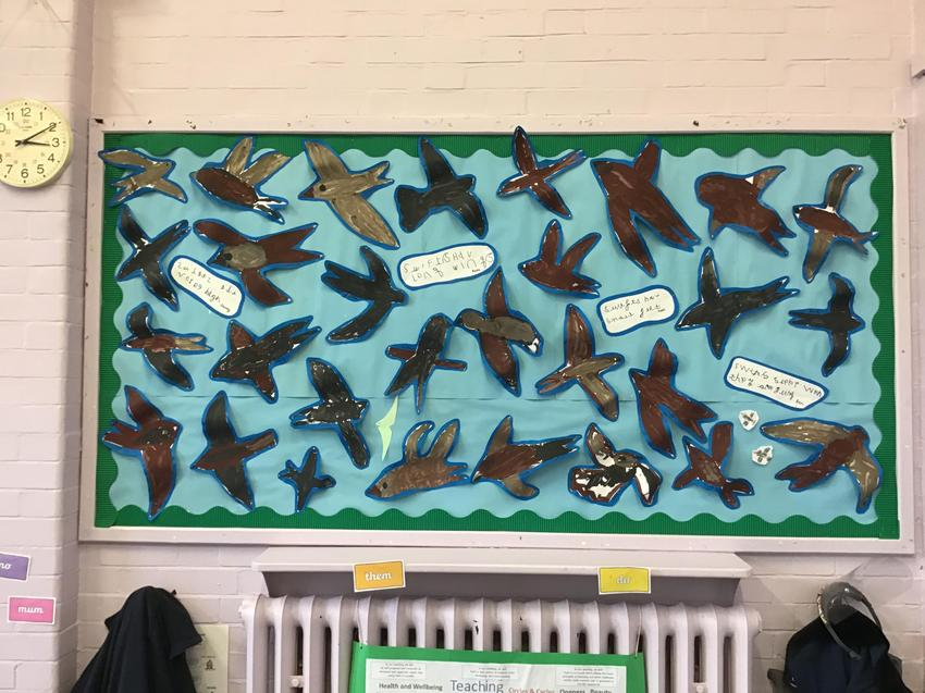 Our beautiful Swifts flying high!