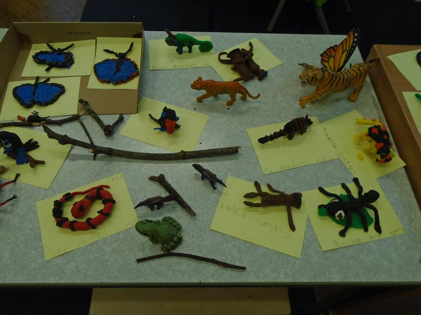 Rainforest animals made out of giotto
