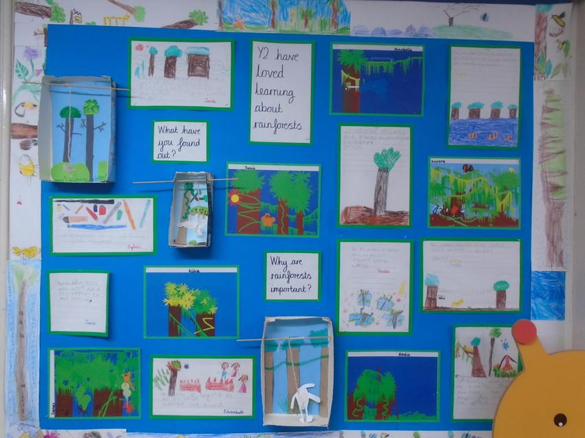 Some of our lovely rainforest work