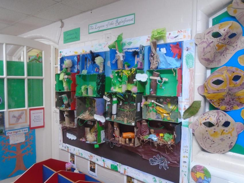 Shoebox dioramas showing the layers of the rainforest