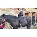 Here is Lauren's oldest daughter reading on her horse!