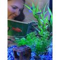 Mrs Robinson read in her aquarium!
