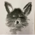 YR6 Drawing with charcoal.