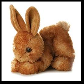 Hop the Bunny