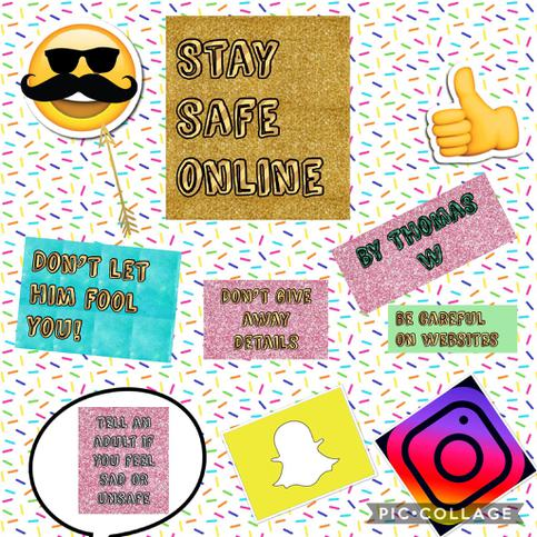 Guides for their Peers on how to stay safe online.