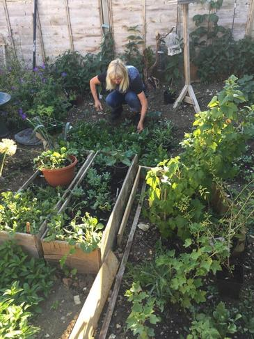 Wendy has been planting and growing veg & flowers