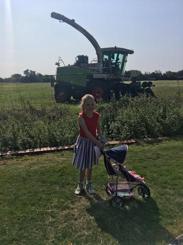 Ruby found a combine harvester
