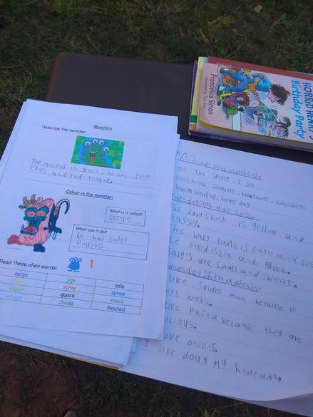 More wonderful curriculum