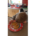 Lewis decorating biscuits