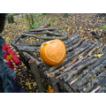 We found some pretty decorated pumpkins