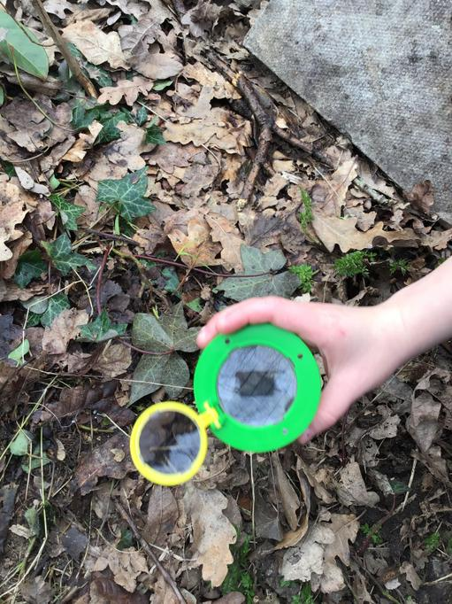 We used magnifying glasses