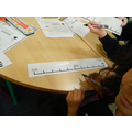 number lines in maths