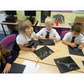 Using the chalks to recreate the animal x-rays
