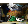 Constructing a dinosaur habitat in a shoe box