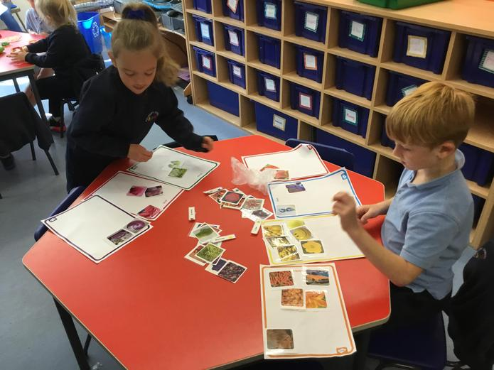 Colour sorting