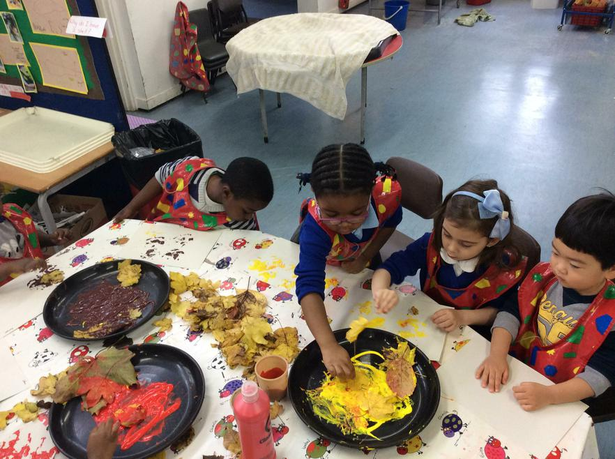We used the leaves we collected for leaf painting