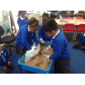 Our archaeological dig...
