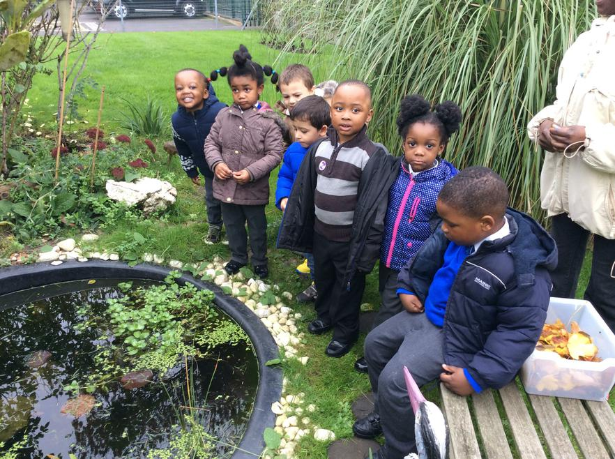 We visited our school pond