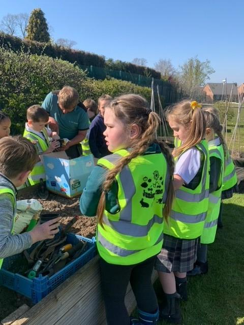 The children started out the season by sowing an array of fruit and vegetable seeds.