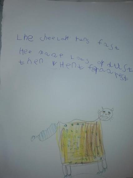 George's excellent cheetah writing