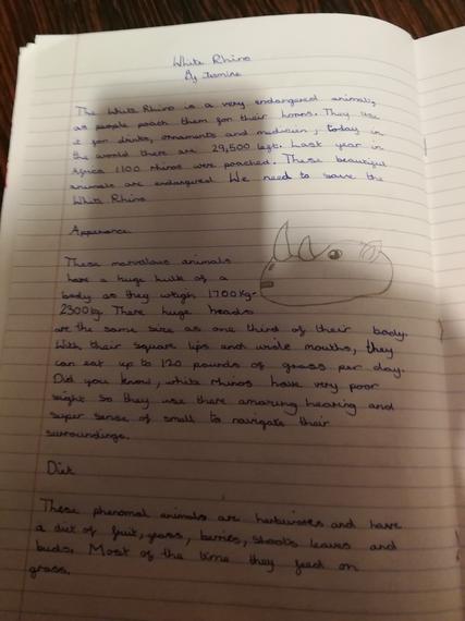 Jasmine's deadly 60 writing