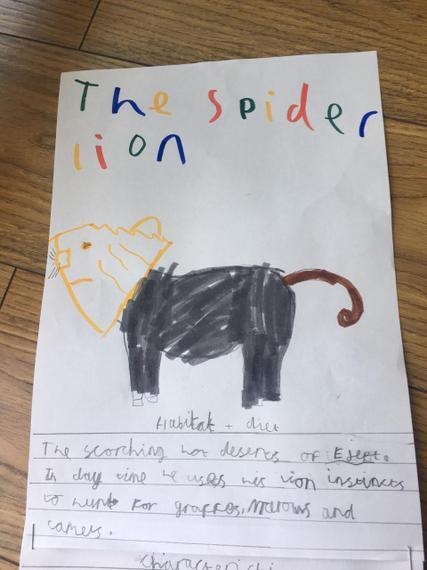 Ewan's spider lion 1