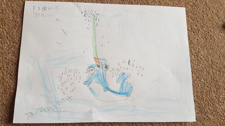 Jazmine's brilliant narwhale