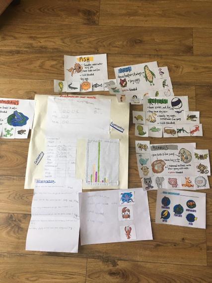 Ewan's amazing classification research