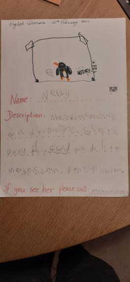 Danusia's lost penguin poster