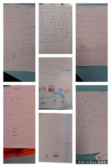 Super seagull stories from our class bubble