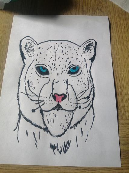 Tobia's leopard